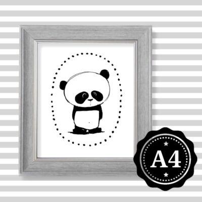 panda reprodukció